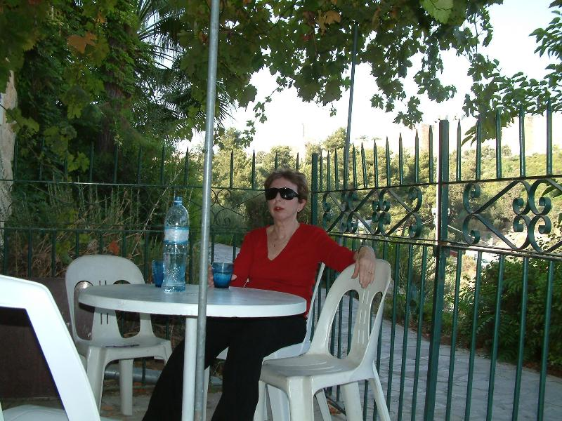 Under the Vine faced the old city walls - Avissar House / Sultan vine suite - Jerusalem - rentals