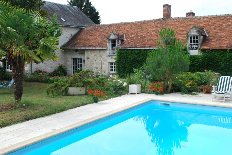 B&B from the pool - Les Camélias de Pallus - Chinon - rentals