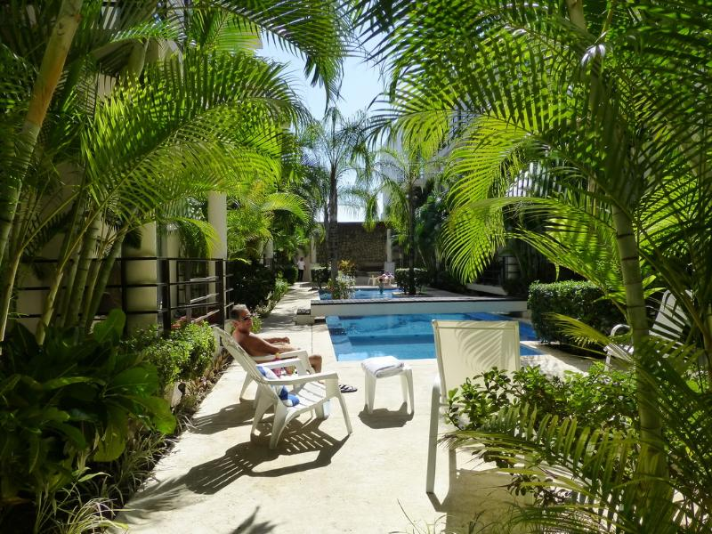Mornings by the courtyard, just below the condo terrace - Casa Limonada - 206 Aqua Terra, Playa del Carmen - Playa del Carmen - rentals