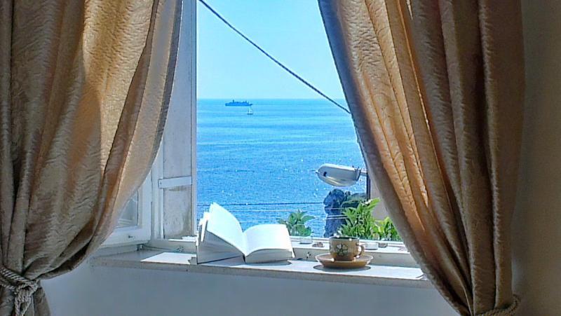 View - Old Dinka - Studio apartment  Old Dinka - Old Town - Dubrovnik - rentals