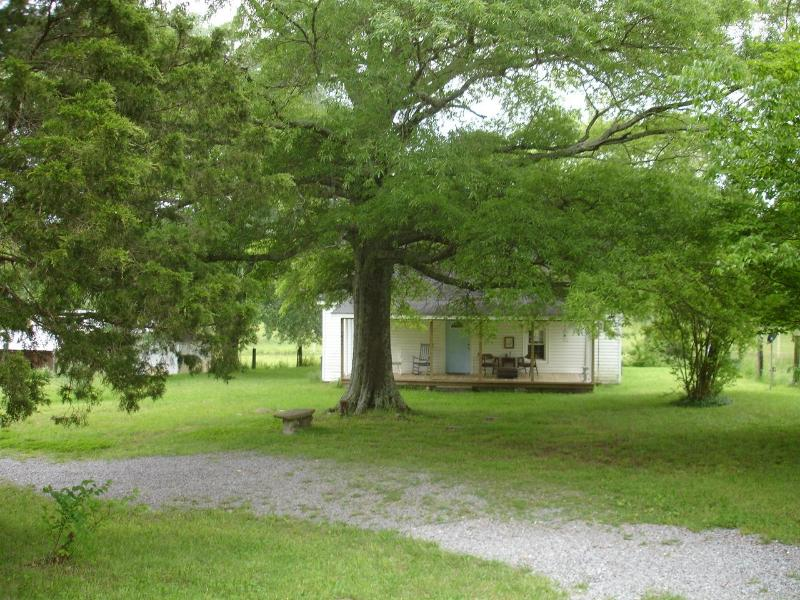 The Pinhoti Farmhouse - Image 1 - Chattanooga - rentals