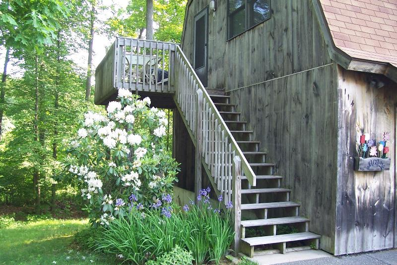 Steps from the nest - A place by the lake to delight all your senses - Lebanon - rentals
