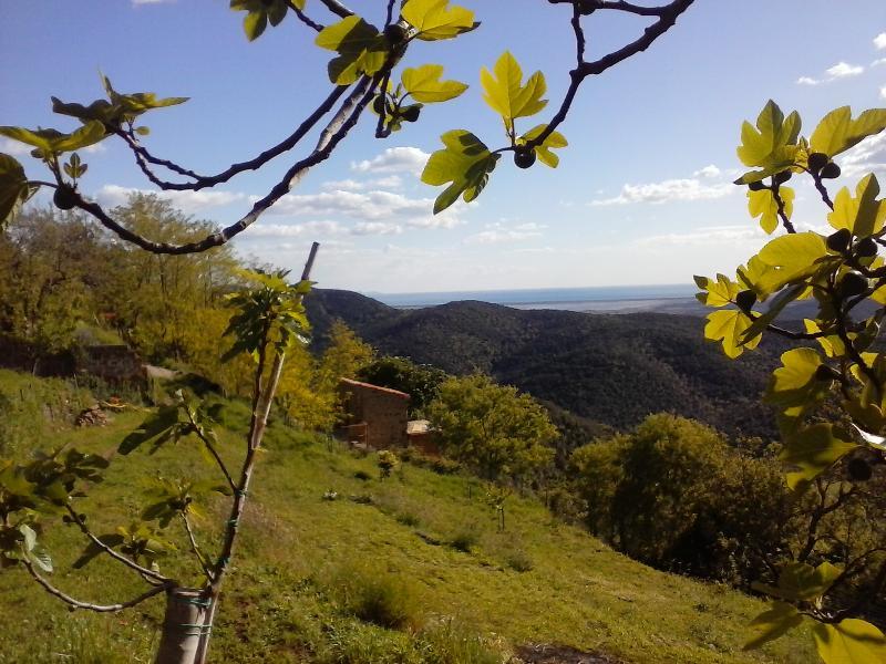 Il Baciarino.  Hideaways in Maremma: La Dolce Vita - Image 1 - Vetulonia - rentals