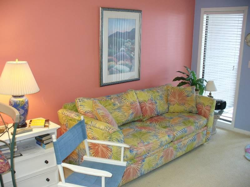 Island Beach & Racquet Club B-308 - Image 1 - Atlantic Beach - rentals