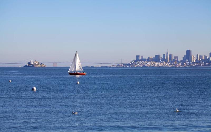 Waterfront View - Sausalito Waterfront Flat - Sausalito - rentals