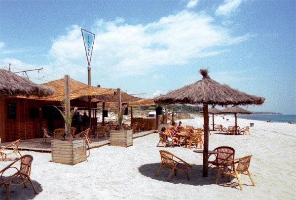 Apartment playa beach - Image 1 - Arenys de Mar - rentals