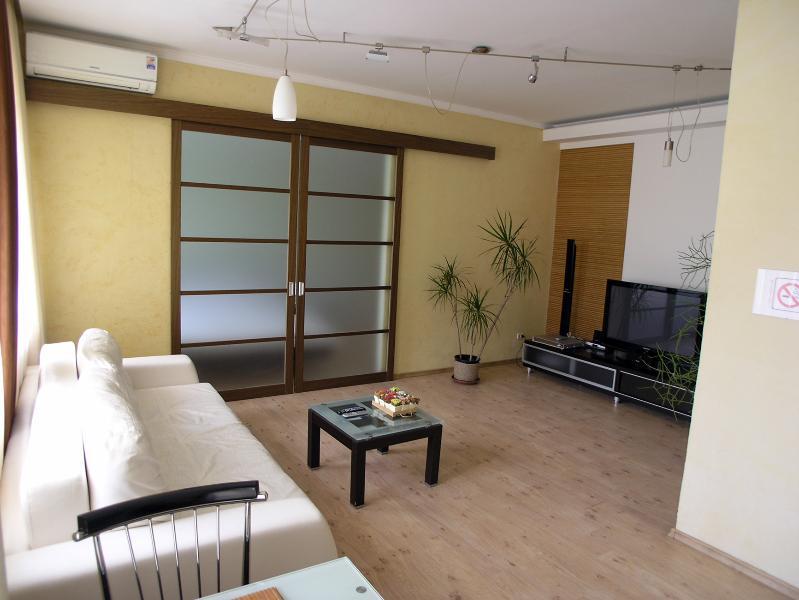 2 room de luxe apt Bali with jakuzzi on Kreschatik - Image 1 - Kiev - rentals