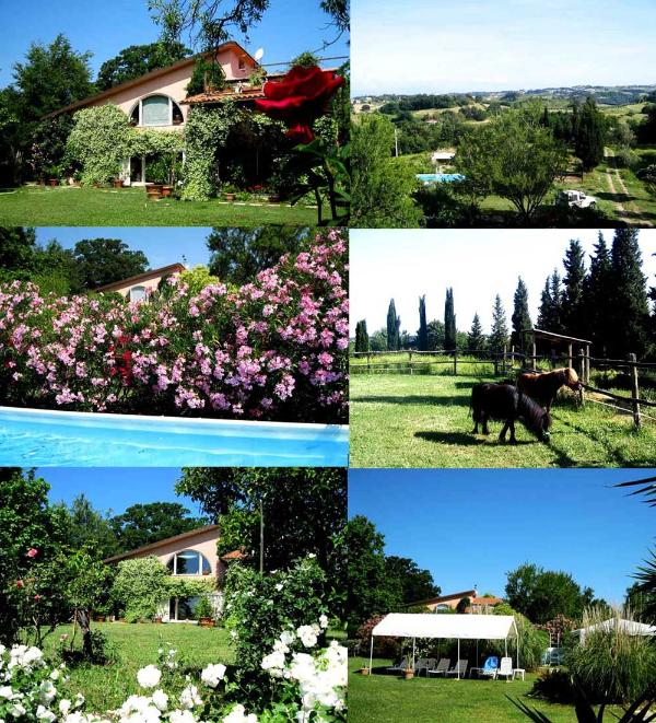 property - Villa with pool Sabine hills, complete  privacy ! - Ponzano Romano - rentals