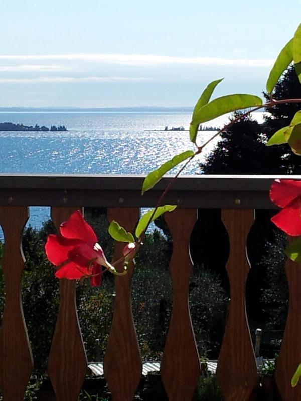 B&BLago Blu...True relaxation overlooking the lake - Image 1 - Gardone Riviera - rentals