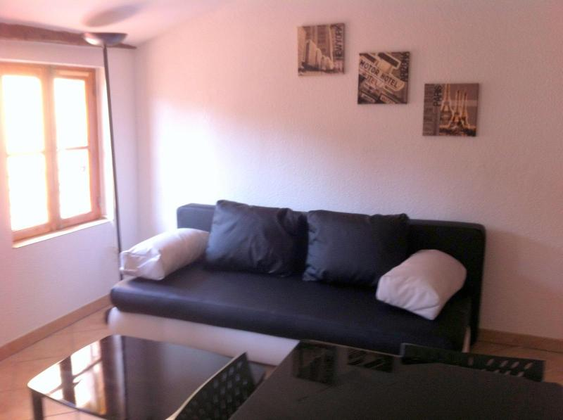 1BD apartment in heart of old town Nice - Riviera - Image 1 - Nice - rentals