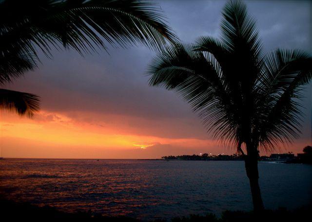 Sea Village 3202-SV3202 - Image 1 - Kailua-Kona - rentals