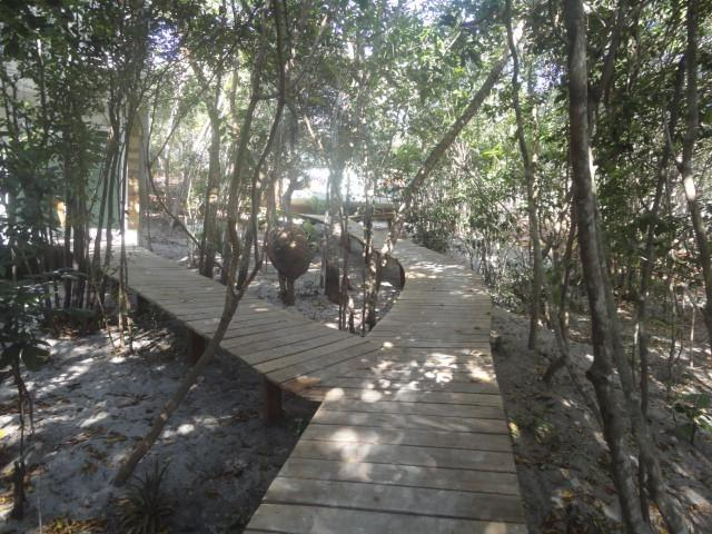 walkway to the house - Triplex house in the forest - State of Rio Grande do Norte - rentals