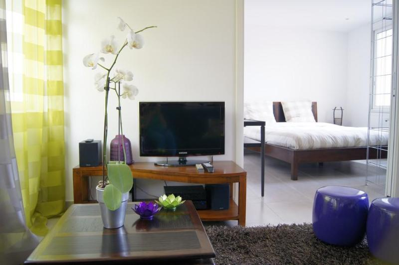 Superb Cannes 1 Bedroom Apartment with Air Conditioning - Renovated 2013 - Image 1 - Cannes - rentals