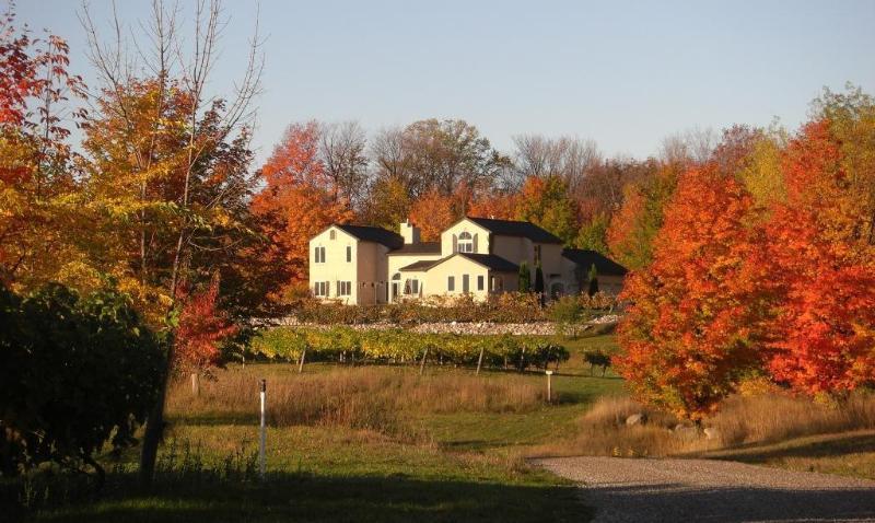 Grey Hare Fall Colors - Grey Hare Inn Vineyard B & B - Traverse City - rentals