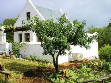 Rhebokskraal olive farm Cottages - Image 1 - McGregor - rentals
