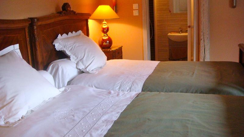The Morells - twin beds - The MORELLS in the heart of Alsace - for 4 to 6 people - Erstein - rentals
