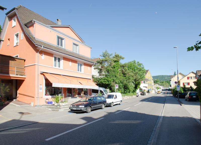 Home sweet home flair for travelers & working peoples - Chez Svanette - Switzerland - rentals