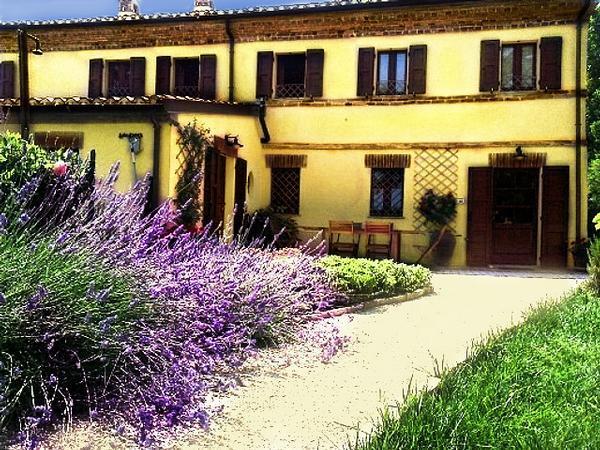 Corner Garden b&b - Corner Garden - Porto Potenza Picena - rentals