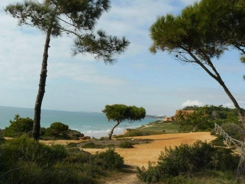 Nice T0 apt 300 m Beach Falesia (Albufeira, Alfama - Image 1 - Albufeira - rentals