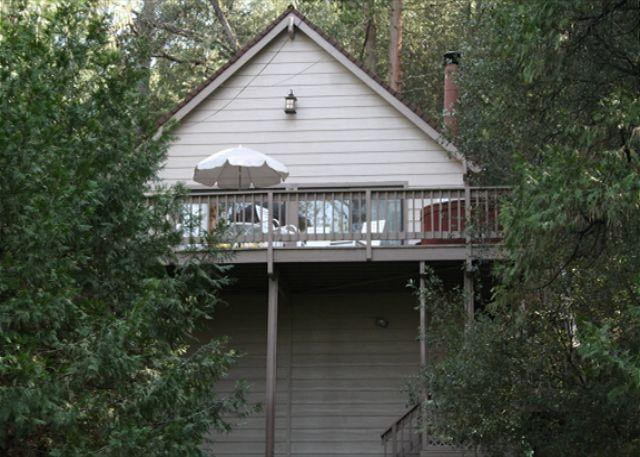 Dog friendly chalet near the lake- foosball, loft/NO HOT TUB - Image 1 - Groveland - rentals