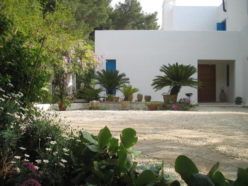 Li Spiri - Image 1 - Matino - rentals