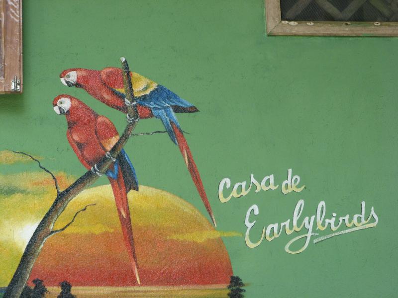 Casa de Earlybirds welcomes you. - Jungle beachfront, Casa de Earlybirds - Manzanillo - rentals