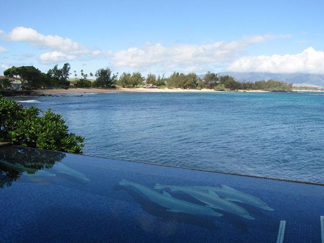 pool with coastline view - Moku Hale ocean front, License STPH2013/0009 - Paia - rentals