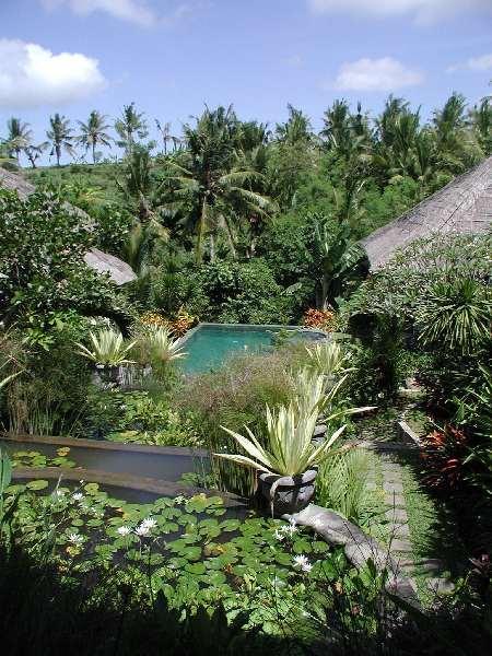 View - Villa Kusuma Sari - Gianyar - rentals
