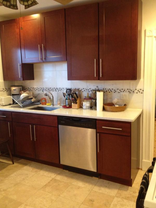 Kitchen - Beautiful new 3 BR/2 Bath close Harvard Sq. - Massachusetts - rentals