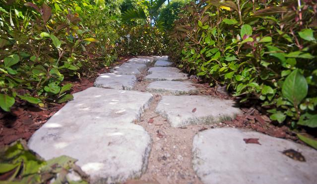 Lovely garden pathway takes you home - Central Retreat in Heart of City - Saint Andrew Parish - rentals