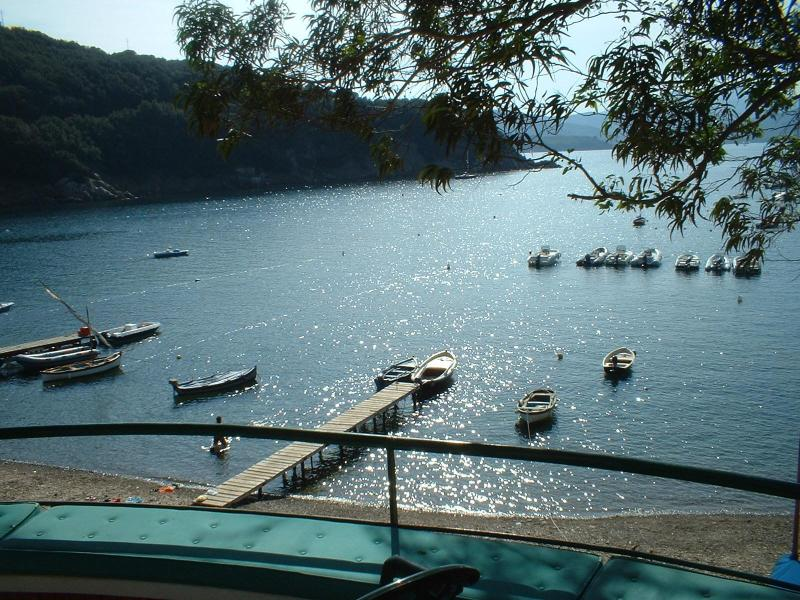 Villa Lia Fabulous on the beach in Elba Island - Image 1 - Bagnaia - rentals