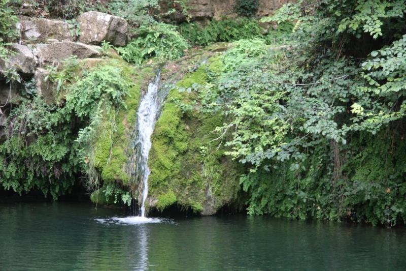 The waterfall in summer - Le Moulin du Roy - Fa - rentals