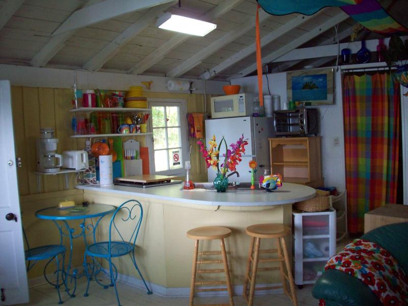 Beach Front cottage on Crystal Clear Maiden Lake - Image 1 - Lakewood - rentals