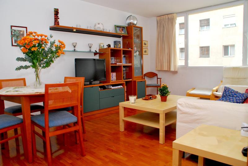 living room with double sofa bed - Beautiful apartment centre wifi 5 min from Pedrera - Barcelona - rentals