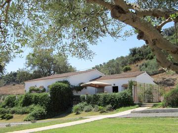 Villa Madreselva is set in 6 acres - Villa Madrerselva - Algodonales - rentals