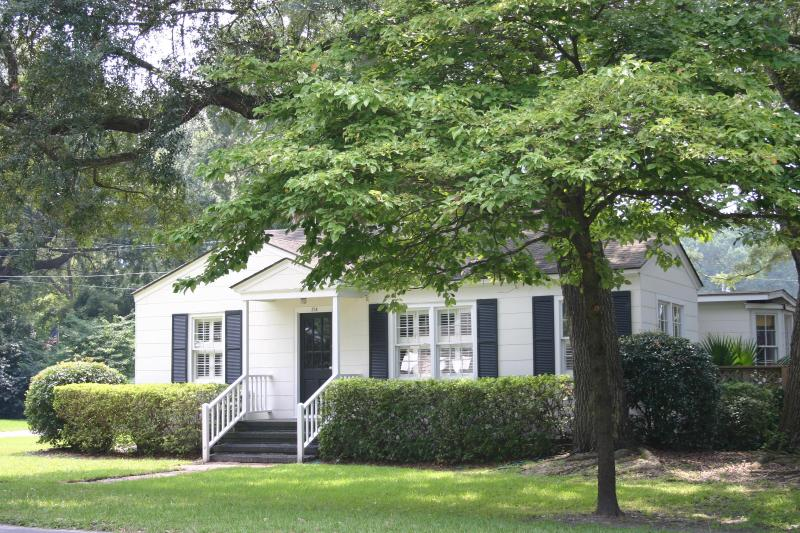 The Seagull Cottage - Image 1 - Saint Simons Island - rentals