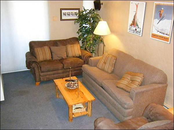 Comfortable Furnishings Throughout - Conveniently Located - Wonderful Family Condo (1319) - Crested Butte - rentals