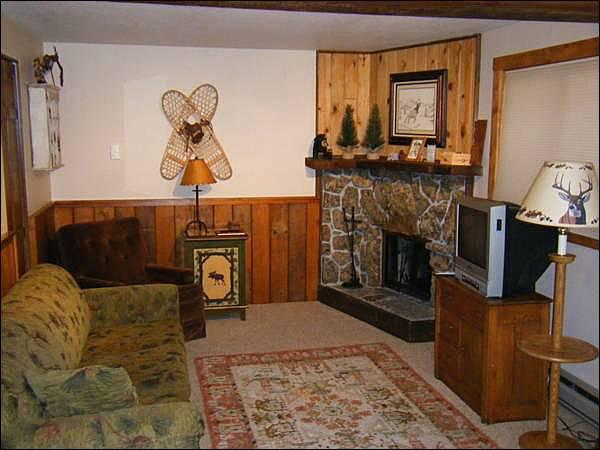 Fireplace, TV, and Sleeper Sofa in the Living Room - Affordable, Quality Accommodations - Ideal for a Couple or Small Family (1344) - Crested Butte - rentals