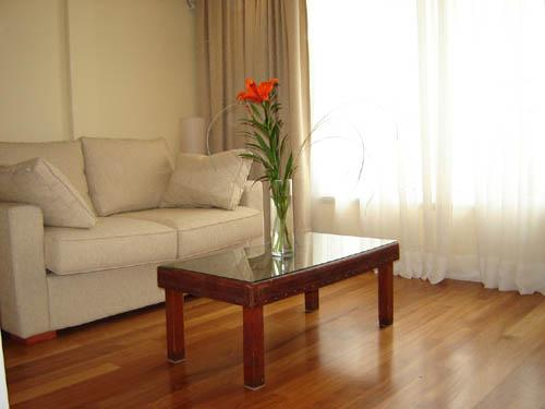 NICE AND BRIGHT STUDIO IN RECOLETA - Image 1 - Buenos Aires - rentals