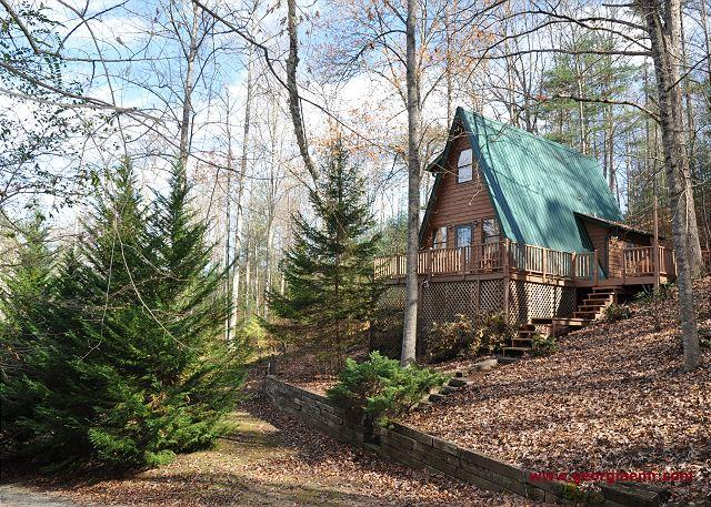 Bear View Cove - Are you looking for seclusion, but with all the fun around the corner? - Blairsville - rentals