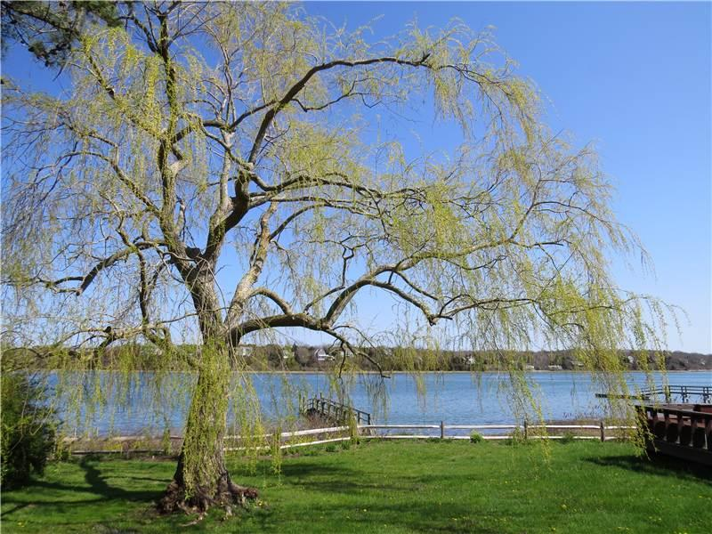 Town Cove Waterfront with Dock - ODIEN - Image 1 - Eastham - rentals