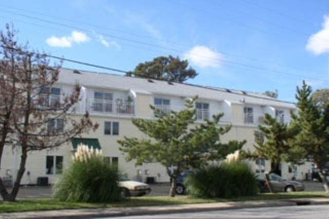Exterior - 1736 Baltic Avenue - Virginia Beach - rentals