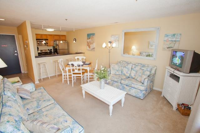 Living Area - 306 Playa Rana - Virginia Beach - rentals