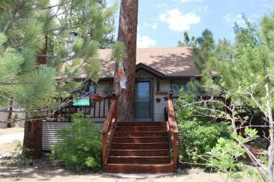 Adorable little cabin by the lake - Adorable Cabin Perfect for a Romantic Getaway to Big Bear Lake - Big Bear Lake - rentals