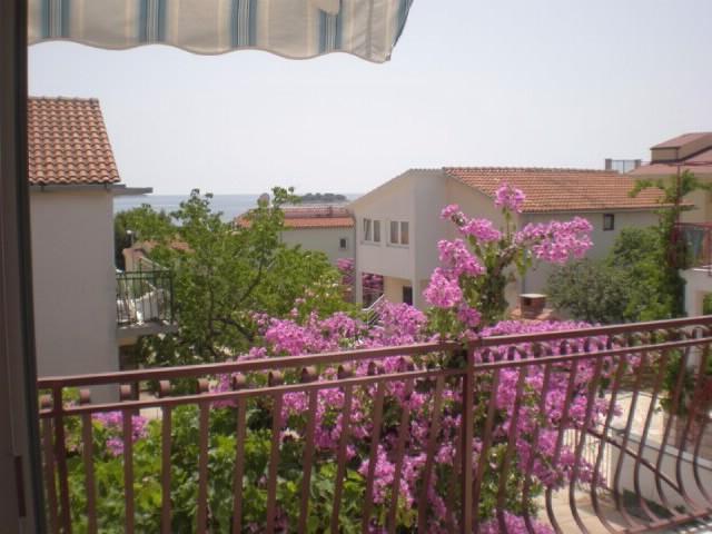 Apartments Mirko - 10781-A1 - Image 1 - Rogoznica - rentals