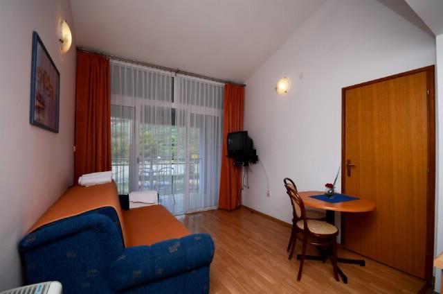 Apartments Slađana - 10911-A7 - Image 1 - Gradac - rentals