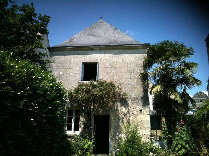 Villandry, au coeur des châteaux de la Loire, joli - Image 1 - Berthenay - rentals