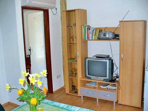 Apartments Marinović - 51591-A6 - Image 1 - Molunat - rentals