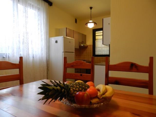 Apartments Dragutin - 70501-A1 - Image 1 - Medulin - rentals