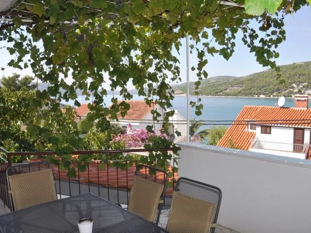 Apartments Ivanka - 30411-A2 - Image 1 - Seget Vranjica - rentals